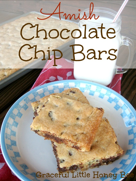 These chocolate chip bars are adapted from an old Amish Cookbook and they taste AMAZING!