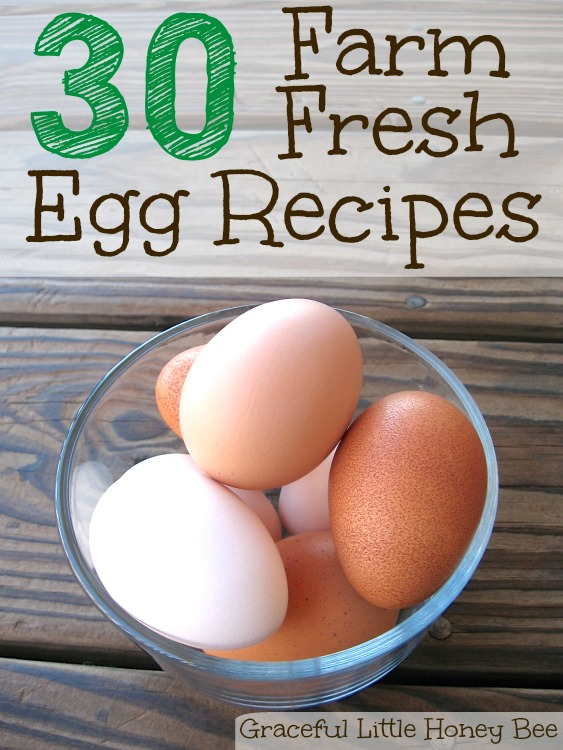 Use this list of recipes when you have an abundance of eggs and need creative ideas to use them up!