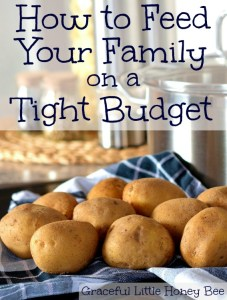 Check out these tips and tricks for feeding your family (well) on a tight budget!
