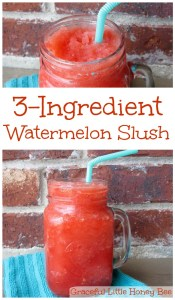 3-Ingredient Watermelon Slush on gracefullittlehoneybee.com