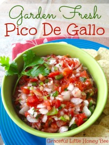 A delicious garden fresh pico de gallo recipe on gracefullittlehoneybee.com