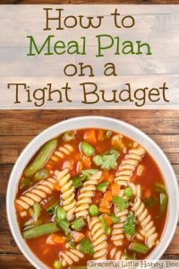 See how to meal plan on a tight budget on gracefullittlehoneybee.com