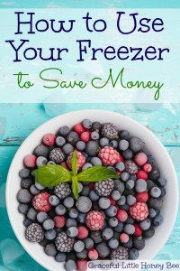 Learn how to use your freezer to save money on gracefullittlehoneybee.com