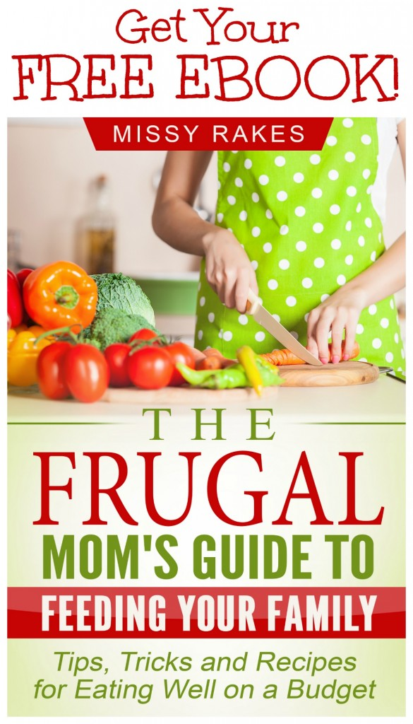 """Get your FREE EBOOK, """"The Frugal Mom's Guide to Feeding Your Family"""" when you subscribe to weekly updates on gracefullittlehoneybee.com. This guide is filled with tips, tricks and recipes to help you feed your family healthy meals on a budget!"""