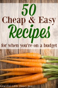 Check out this ultimate list of 50 cheap and easy recipes for when you're on a budget on gracefullittlehoneybee.com