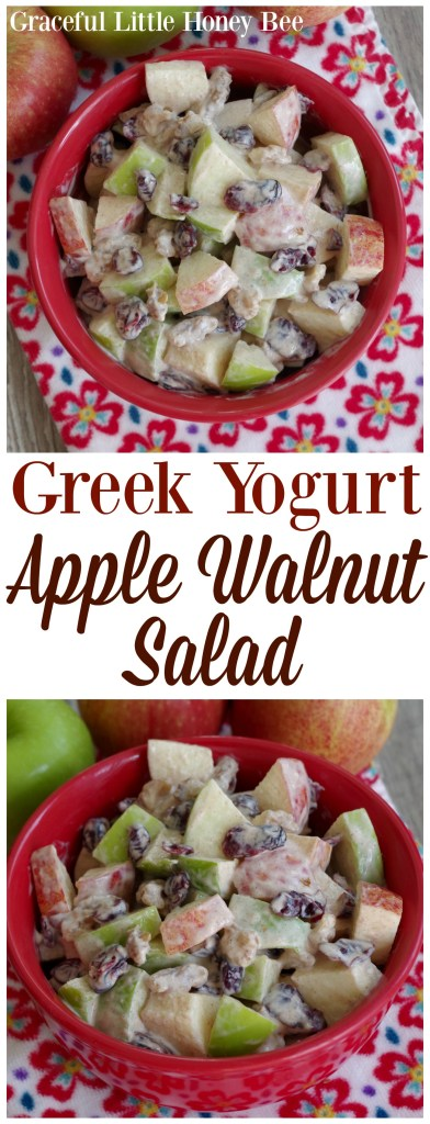 Try this Greek Yogurt Apple Walnut Salad as a light and healthy dessert on gracefullittlehoneybee.com