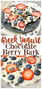 Try this super easy Greek Yogurt Chocolate Berry Bark for a fun and healthy snack on gracefullittlehoneybee.com