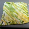 dishcloth2
