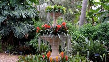 Marie Selby Botanical Gardens in Sarasota, Florida.