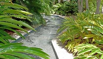 waterway at Florida Botanical Gardens in Largo, Florida
