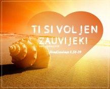 Uvijek voljen