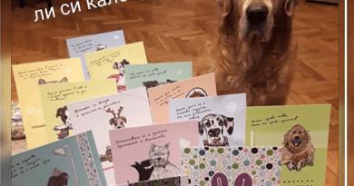 благотворителни коледни календари
