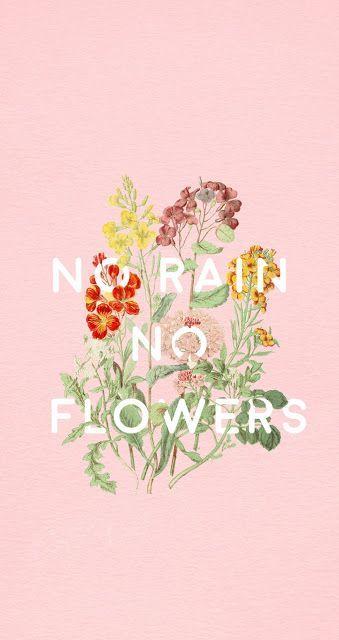 без дъжд няма цветя