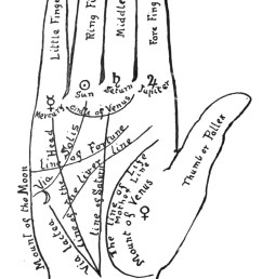 palmistry diagram by holmes w merton collage candy vintage and ancient hand diagrams [ 1216 x 2076 Pixel ]