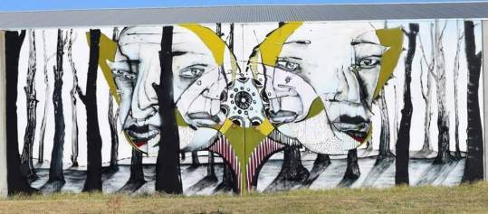 Ears. Photo © Benalla street art wall to wall