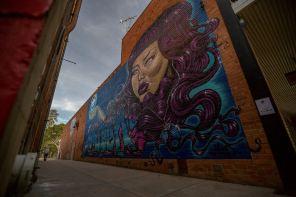 Maid Wall to Wall Festival Benalla Photo © p1xels