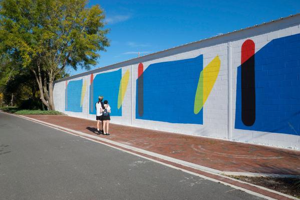 Elian-mural-352walls-gainesville-3