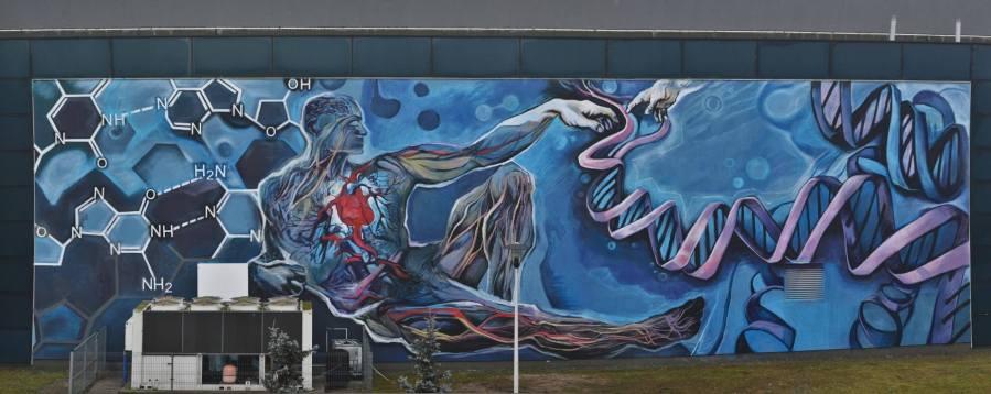 piotr-chrzanowski-urban-forms-lodz-poland-street-art-photo-credit-pawel-trzezwinski