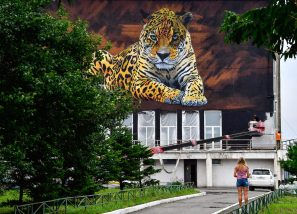 Sonny, To the Bone Street Art Mural, Far Eastern Leopard, Vladivostok Russia 2017. Photo Credit YuriySmityuk.
