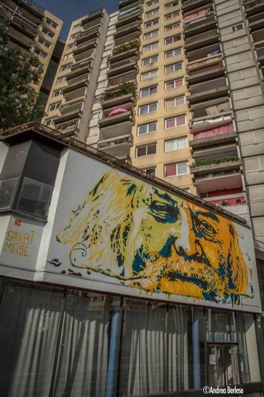 grenoble-street-art-festival-2017-M4U-Sahbi-Moãse