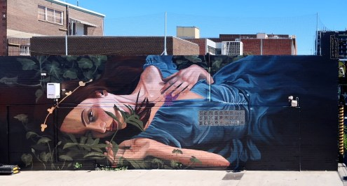 Loretta Lizzio, The Big Picture Fest, Street Art Festival, Frankston, Victoria, Melbourne. Photo Credit @vanstheomega