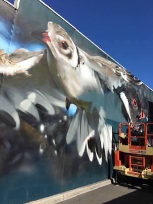 DVATE, The Big Picture Fest, Street Art Festival, Frankston, Victoria, Melbourne. Photo Credit @vanstheomega