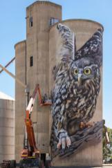 wall-to-wall-street-art-festival-australia-benalla-pc-nicole-reed-Dvate-1