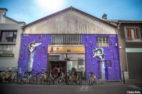 Grenoble-Street-Art-Festival-Stel-54-bis-rue-Abbé-Grégoire