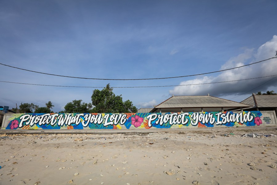 Kidney-Sea-Walls-Murals-for-Oceans-Bali-2018-street-art-pangeaseed-pc-tre-packard-2