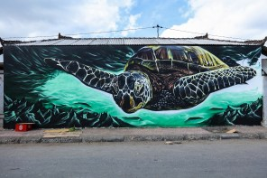 Midas-Sea-Walls-Murals-for-Oceans-Bali-2018-street-art-pangeaseed-pc-tre-packard-1
