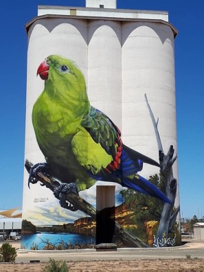 D'Vate – South Australia Silo Art Trail –Waikerie were the twenty fifth silos to be completed in 2018. Photo Credit Janet Gregory