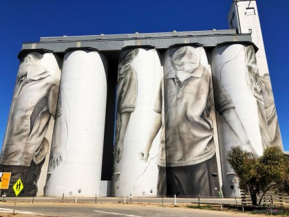Guido Van Helten – South Australia Silo Art Trail –Coonalpyn were the seventh silo in the Australian Silo Art Trail and were the first to be completed in SA in 2017. Photo Credit Annette Green