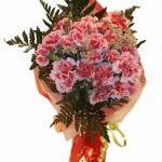 Ramo de claveles Graficflower
