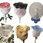 Rosas especiales graficflower ok