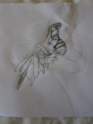 Kurs8/15/Schmetterling1