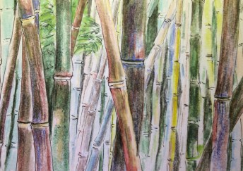 Bambusgarten4