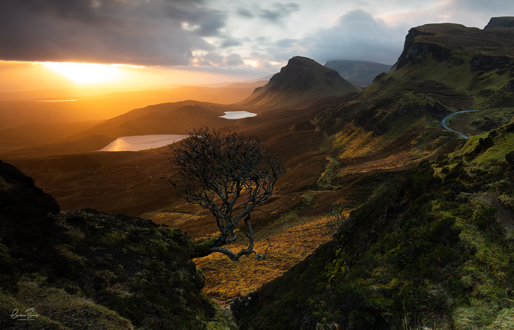 Forced Aura Quirang Lone Tree Isle of Skye sunrise