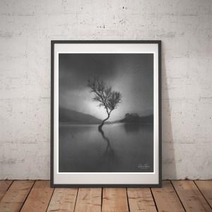 Llanberis Lone Tree framed print