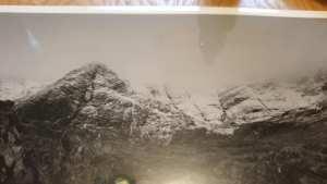 Hand spotting darkroom print