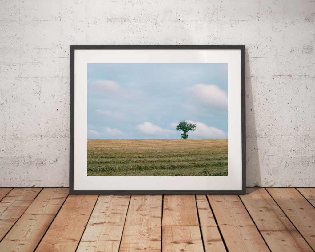 Tree on hill 2 Framed Scholes Cleckheaton