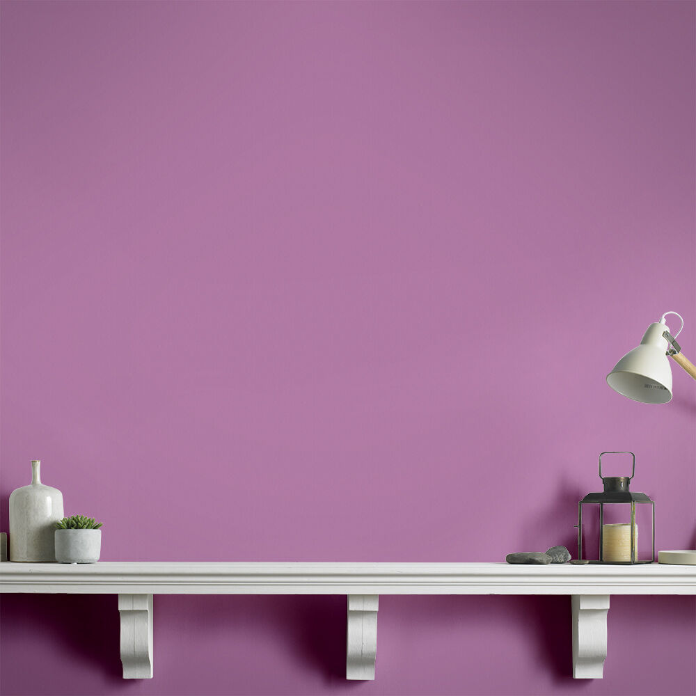 purple paint purple wall