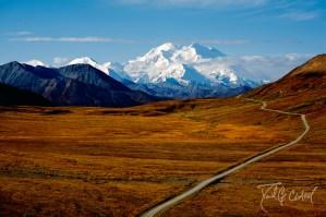 Into Denali National Park