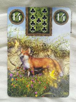 Fairy Lenormand Oracle cards - Graine d'Eden review, présentation. Cartes Oracle, tarot