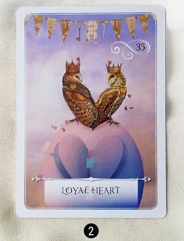 7 au 13 novembre - Votre guidance de la semaine - Votre guidance de la semaine avec Wisdom of the Oracle cards divination de Colette Baron-Reid - Graine d'Eden Tarots et Oracles divinatoires - avis, review, présentations