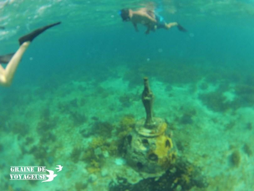isla mujeres musa snorkel