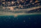 Voir le plancton phosphorescent à Koh Rong
