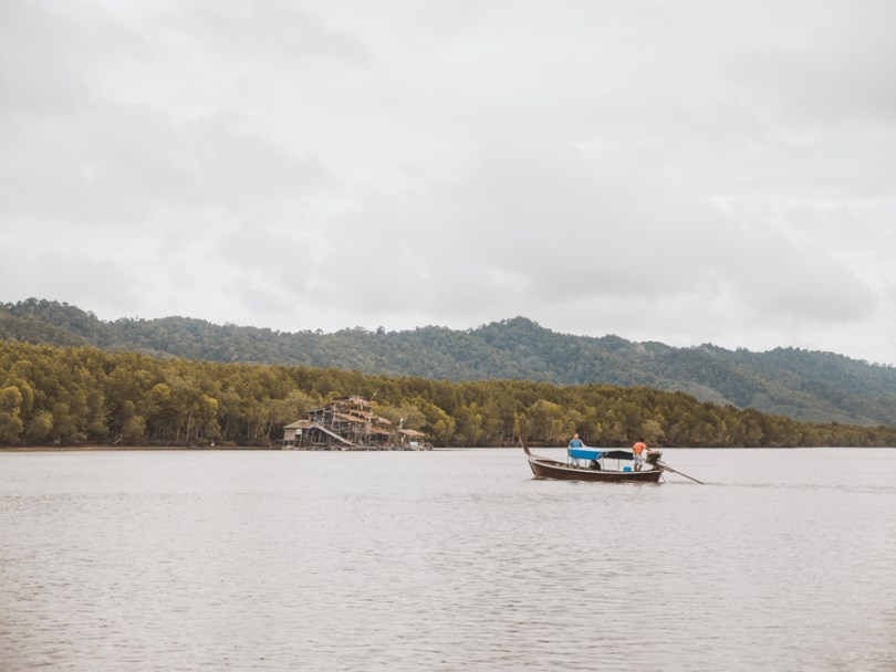 Mangrove Forest Koh Lanta