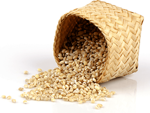 Malt-Extract…-A-Loaded-Mash