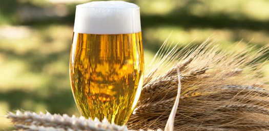 Barley14