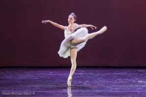 Black Swan Flavia Stocchi